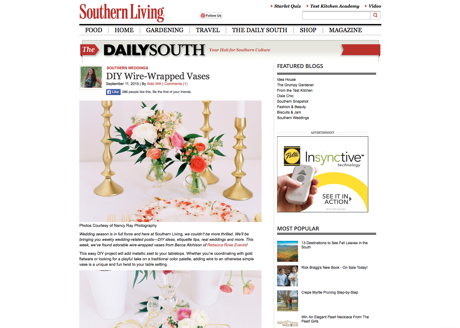 Daily South